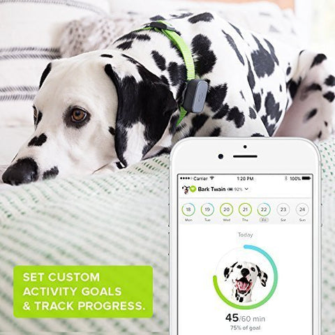 Whistle 3 GPS Pet Tracker & Activity Monitor - smarttrendstore