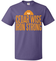 Cedar Wise Iron Strong - FOL Classic Unisex T-Shirt