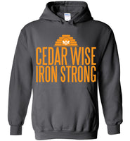 Cedar Wise Iron Strong - Gildan Heavy Blend Hoodie