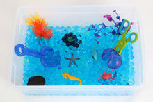 Load image into Gallery viewer, Coral Reef Sensory Bin