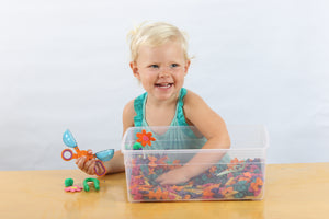 Monthly Subscription: Sensory Bins