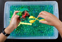 Load image into Gallery viewer, Monthly Subscription: Sensory Bins