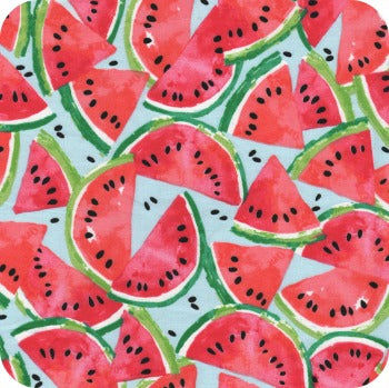 (Made to Order) *NEW* Watermelon Wet Bag