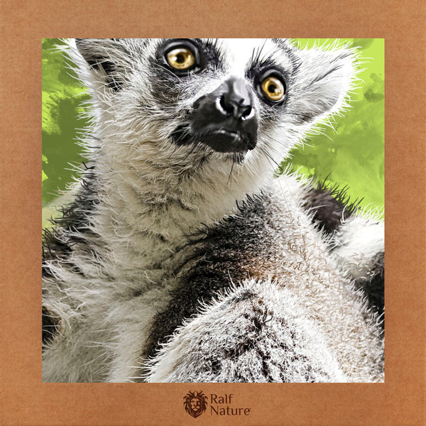 Lemur T-Shirt Kids