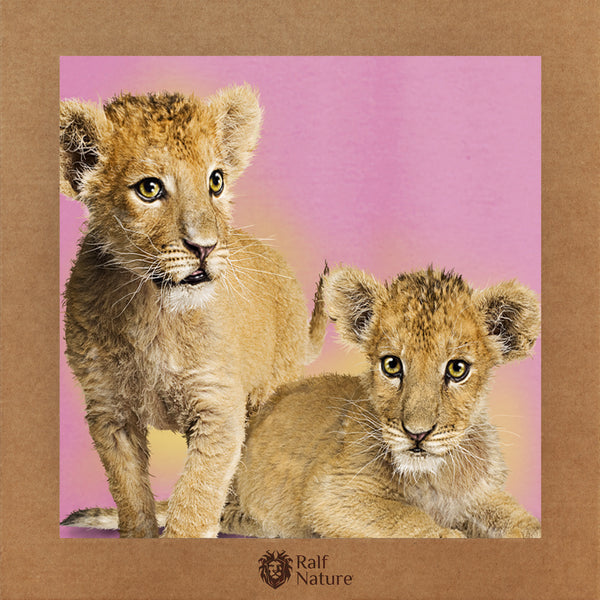 Lion Babies T-Shirt Kids