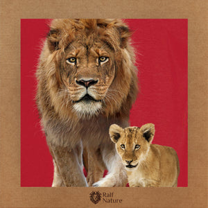 Lion & Cub Walk T-Shirt Kids