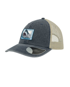 Passion 4 Shark Cap