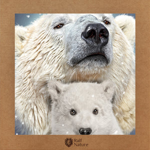 Polar Bear & Son 02 T-Shirt Kids