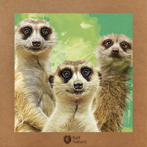 Meerkats T-Shirt Kids