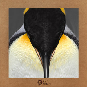 King Penguin Head T-Shirt