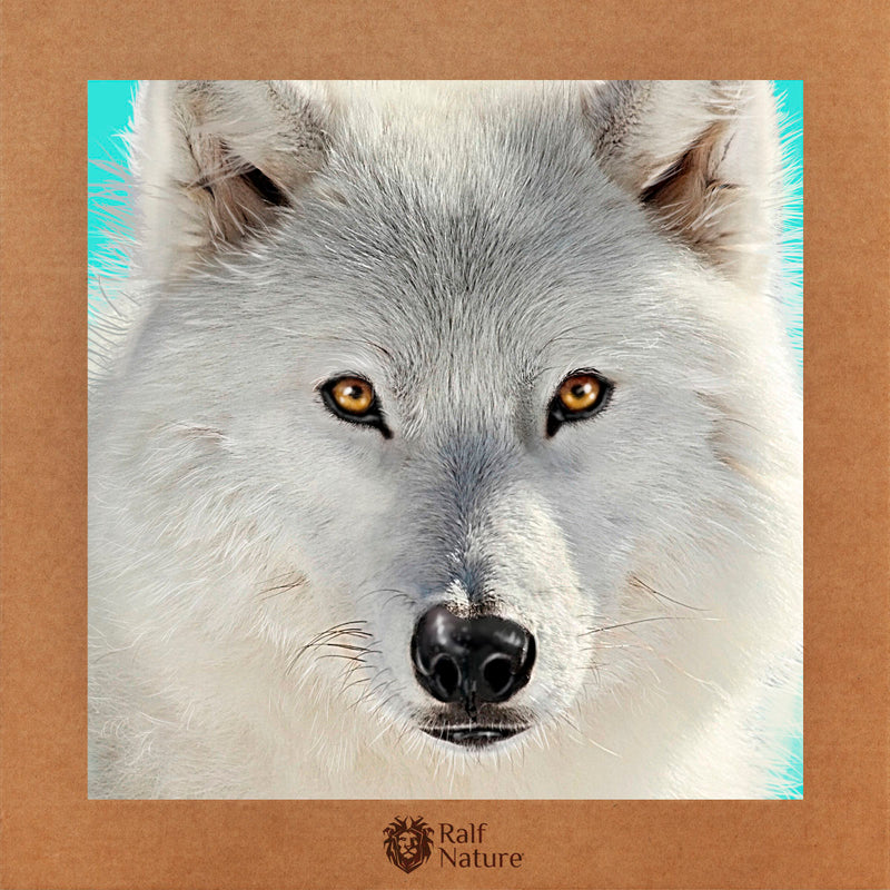 White Wolf Look T-Shirt Kids