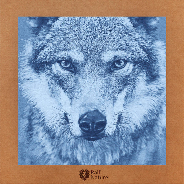 Wolf XR T-Shirt Kids
