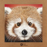 Red Panda Head T-Shirt Kids