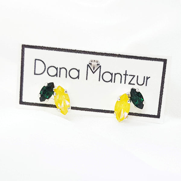 Summer post earrings, Shai Colorful earrings, Dana Mantzur