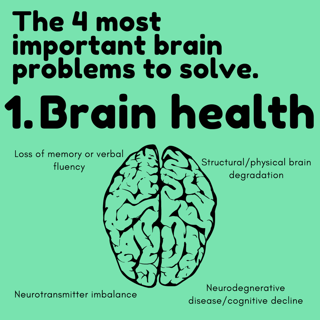 The 4 most important brain problems to solve! Part 1 - Brain Health | Neuratech