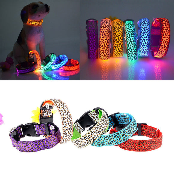 Nylon LED Pet Dog Collar Night Safety Flashing Glowing Leash