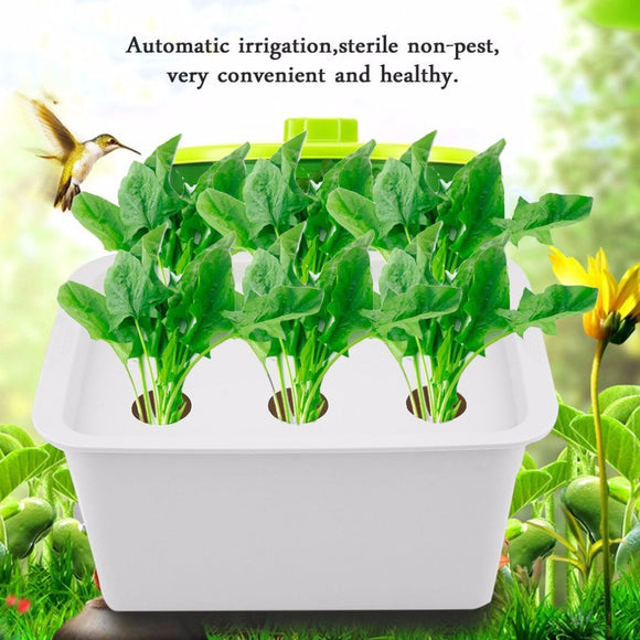 6 Holes 220V/110V Plant Site Hydroponic System Indoor Garden Cabinet Box Grow Kit