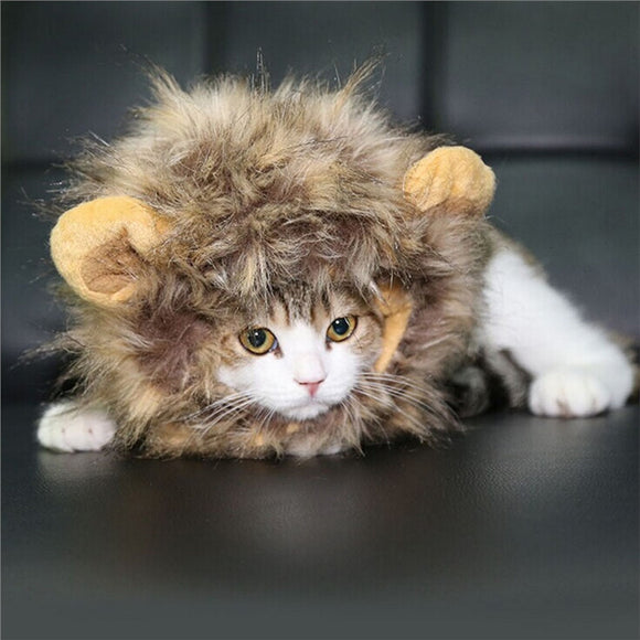 Pet Costume Lion Mane Wig with Ears for Small Dog Cat