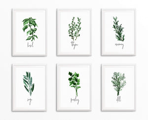 Herb Prints For Kitchen | Botanical Prints | Ollie + Hank