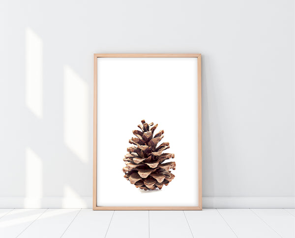 Pine Cone Wall Art | Scandinavian Wall Art | Ollie + Hank