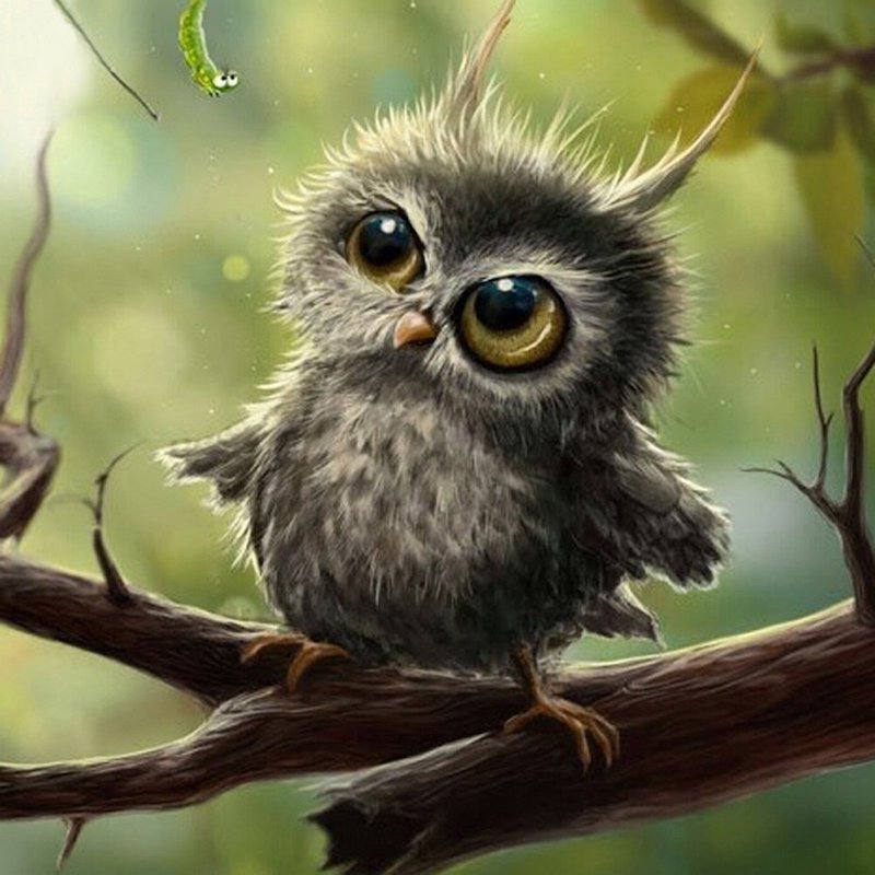 Diamond Painting - Little Owl - Floating Styles - Diamond Embroidery - Paint With Diamond