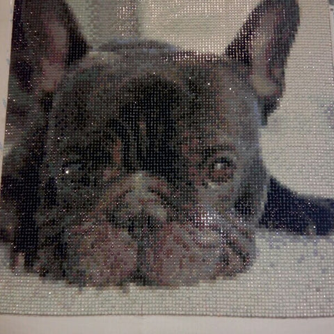 Diamond Painting - Bulldog francese - Stili galleggianti - Ricamo a diamante - Dipingi con diamante