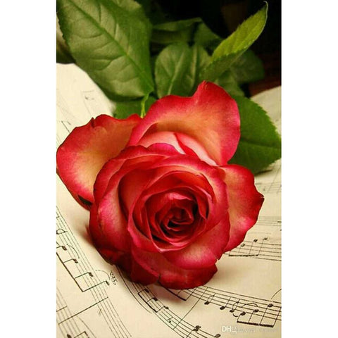 Afbeelding van Diamond Painting - Rose Music Sheet