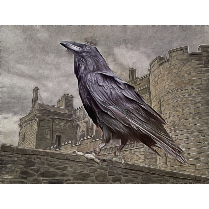 Peinture au diamant - Crow On The Great Castle - Styles flottants - Broderie au diamant - Peinture au diamant