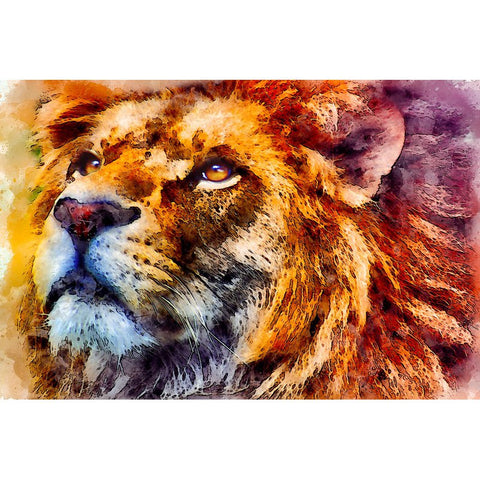 Diamond Painting - Lion Look into the Sky