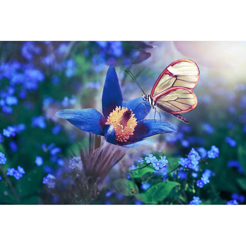 Image de Diamond Painting - Butterfly and the Flower