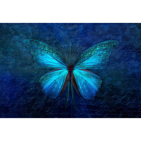 Afbeelding van Diamond Painting - Blue Butterfly