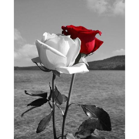 Diamond Painting - Black N White With A Red Rose - Floating Styles - Diamond Embroidery - Paint With Diamond