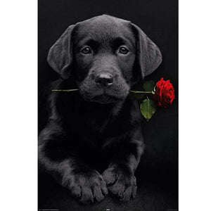 Diamantmaleri - Labrador Dog & Rose - Flytende stiler - Diamantbroderi - Maling med Diamond