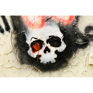 Pintura diamante - calavera en pared
