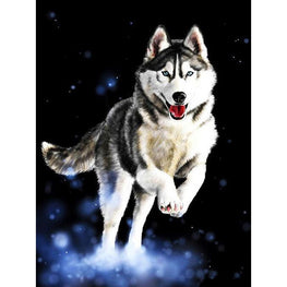 Diamond Painting - Running Husky