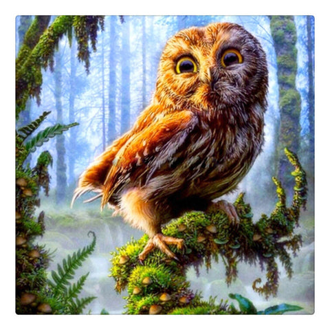Immagine di Diamond Painting - Forest Owl - Stili fluttuanti - Diamante Ricamo - Dipingi con diamante