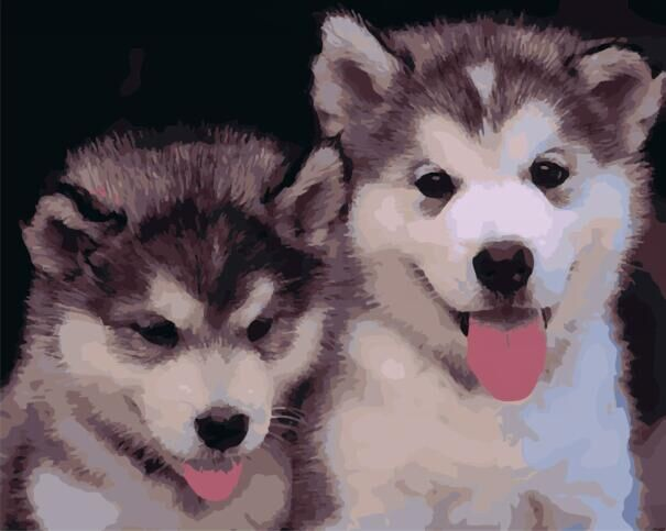 Paint by Numbers - Alaskan Malamute Dogs - Floating Style - Diamond Haft - Paint With Diamond