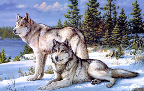 Diamond Painting - Winter Wolves - Floating Styles - Diamond Embroidery - Paint With Diamond