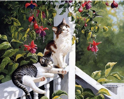 Paint by Numbers - Kitties on the Porch - Floating Styles - Diamond Embroidery - Paint With Diamond