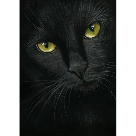 Pittura con diamanti - Gatto nero - Stili galleggianti - Ricamo a diamante - Dipingi con diamante