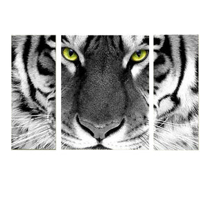 3 Painéis Diamond Painting - White Tiger - Estilos Flutuantes - Diamond Embroidery - Paint With Diamond