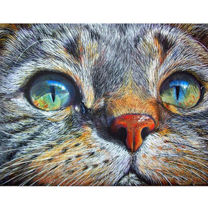 Diamond Painting - Cat Staring - Stili fluttuanti - Ricamo a diamante - Dipingi con diamante