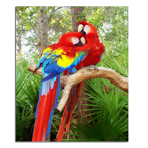 Diamantmaleri - True Parrot Par - Flytende Stiler - Diamantbroderi - Maling Med Diamond
