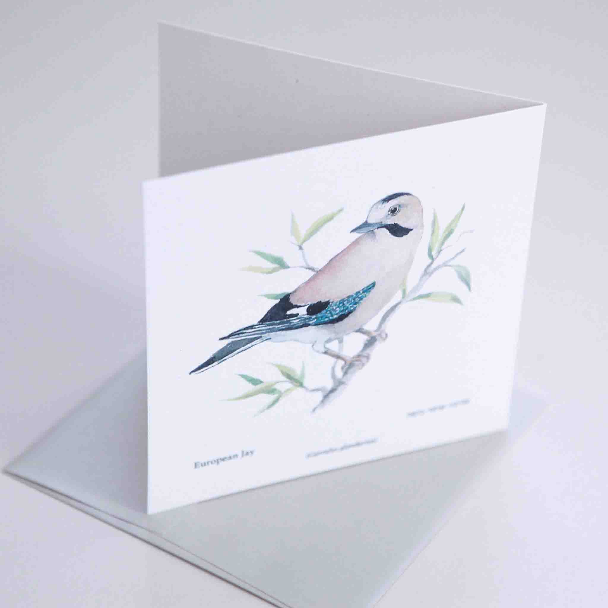 Jay Greeting card