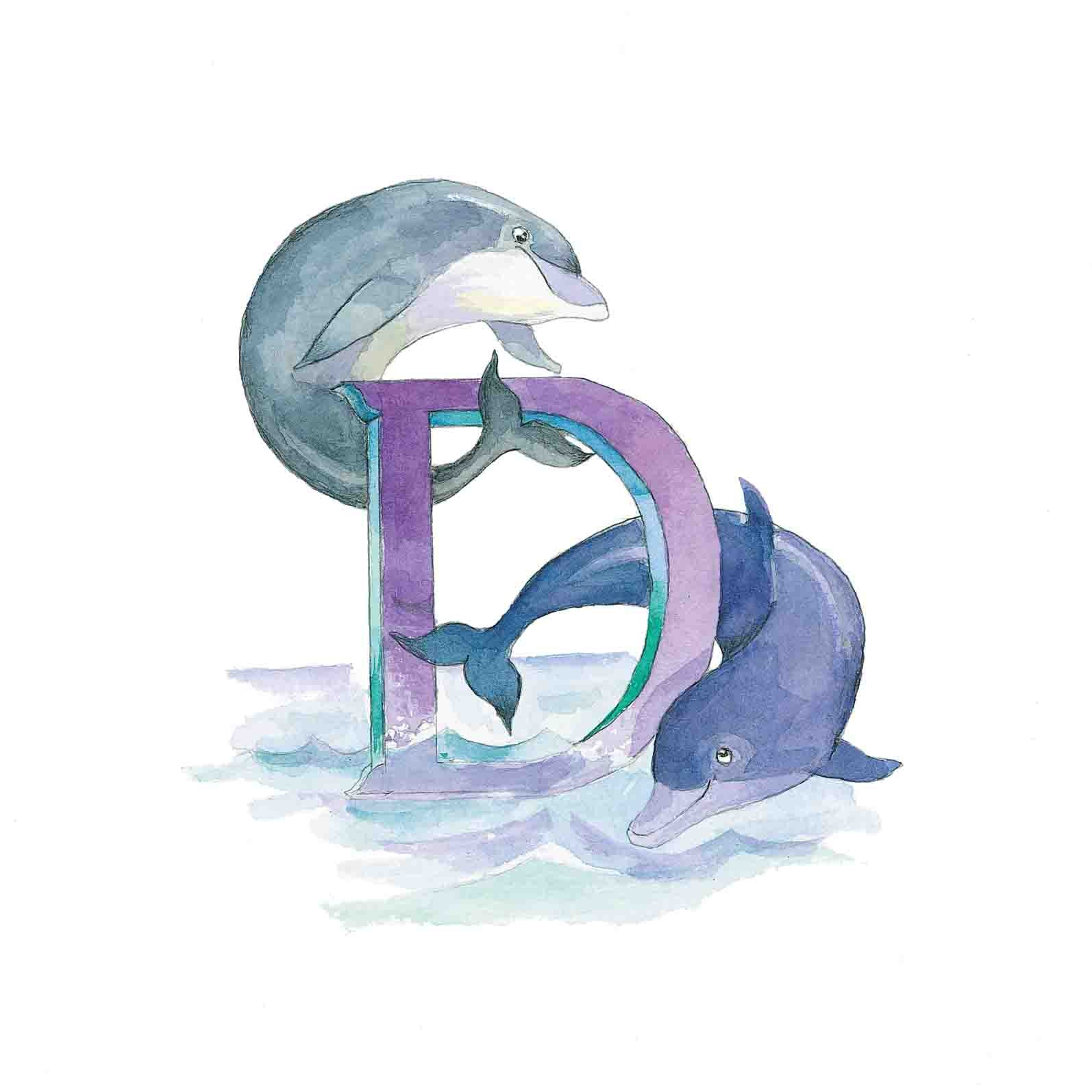 D for Dolphin
