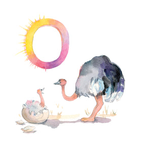 O for Ostrich