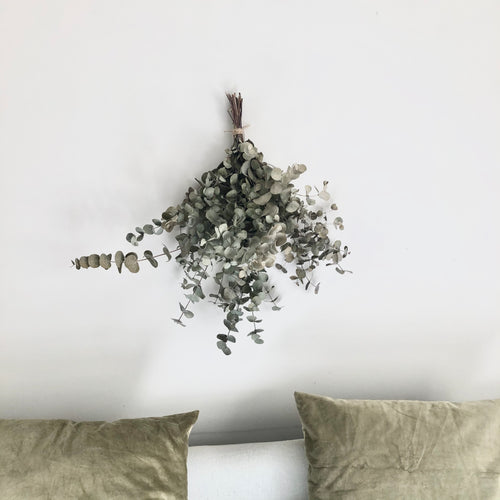 Preserved Dried Eucalyptus bundle