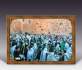 Cartaz Sucot no Kotel