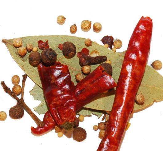 Hot Pickling Spice - 16 Oz.