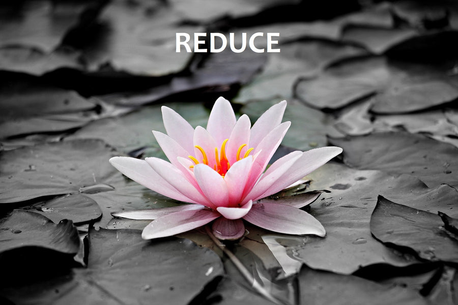 Reduce : a first step to zero waste!